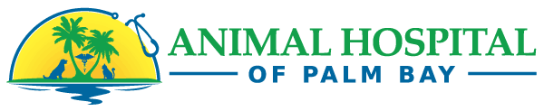Animal Hospital of Palm Bay